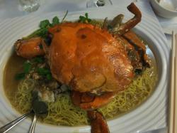 A $75 Mud Crab