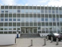 Arni Magnusson Institute (Stofnun Arna Magnussonar)