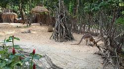 Ubon Zoo