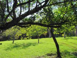 Parque Ecológico Eugênio Walter