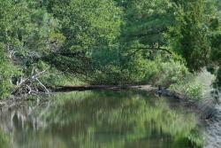 Brock Environmental Center - Chesapeake Bay Foundation