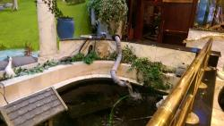The strangest water feature. Fawlty Towers style.
