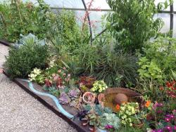 Midney Gardens