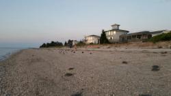 Pickering Beach