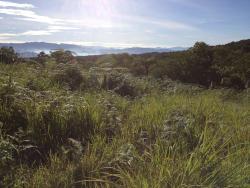 Mount Kitinglad Range National Park