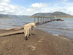 Dhom Dam