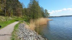 Skogshem & Wijk Meetings (Mötes och konferenshotell)