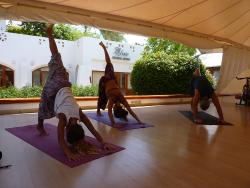 Omkara Yoga School