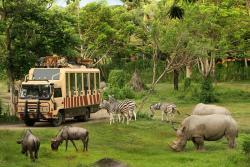 Taman Safari dan Bahari Bali