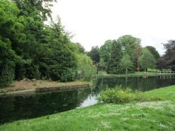 The Grove Park