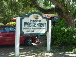 Wayside Fruit & Vegetable