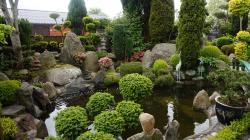 Den Japanske Have - Struer