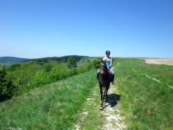 Bilsdale Riding Centre