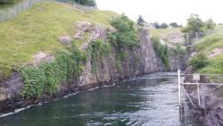 Buford Dam Park