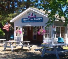 Pine Tree Frosty