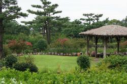 Hueree Park