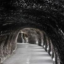Holdvölgy Cellar Experience