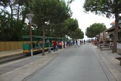 Petit Train Cap Ferret