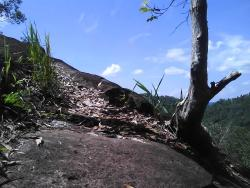 Taman Wisata Alam Tangkiling