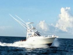 Scales N Tails Charters