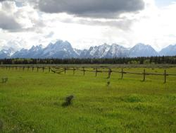 Elk Ranch Flats Turnout, Grand Teton National Park
