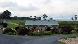 Kindred Pointe Winery