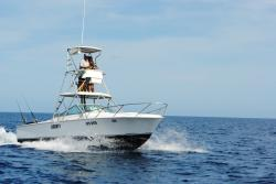Bluefishing Tours