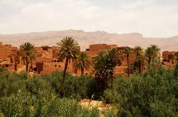 Sahara Experience Private Day Tours