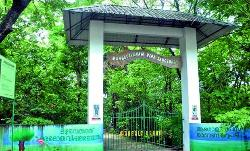 Mangalavanam Bird Sanctuary