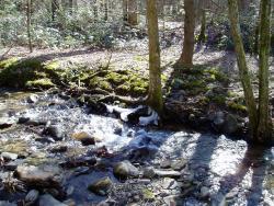 Metcalf Bottoms Trail