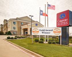 Comfort Suites Lindale - North Tyler