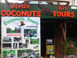 Coconut Tours