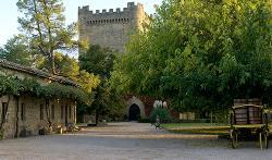 Castillo de Cuzcurrita Wine Cellar
