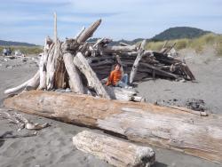 Grandson on driftwood