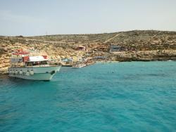 Ozzi One Cruise