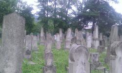 Moinesti Jewish Cemetery
