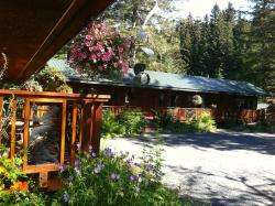 Steller Bed and Breakfast