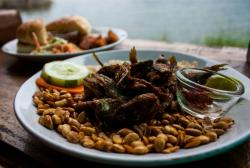 Samay Restaurant