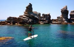 Posidonia Activa Ibiza