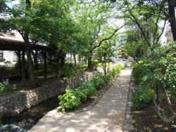 Furukawa Shinsui Park