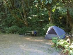Tolt MacDonald Park & Campground