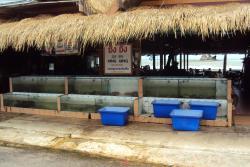 Xing Xing Seafood