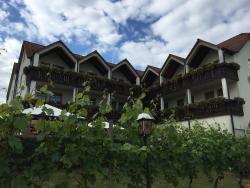 Hotel Goger Augsfeld