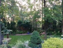 Incredible backyard garden