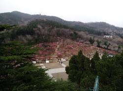 Yantai Da Nanshan Park