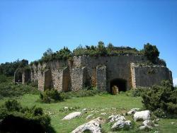 Cava Don Miguel