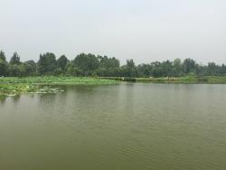 Bailuwan Ecological Wetland Park