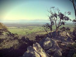 Mount Ida Lookout