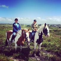Feeney's Equestrian Centre