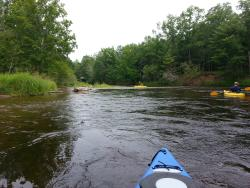 Baldwin Canoe Rental